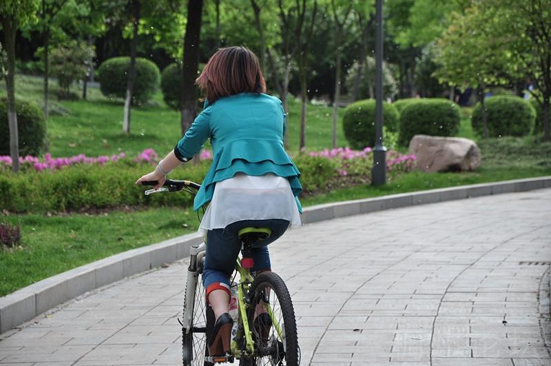 雪峰公园 柳絮飞舞中骑自行车的美女 持续更新